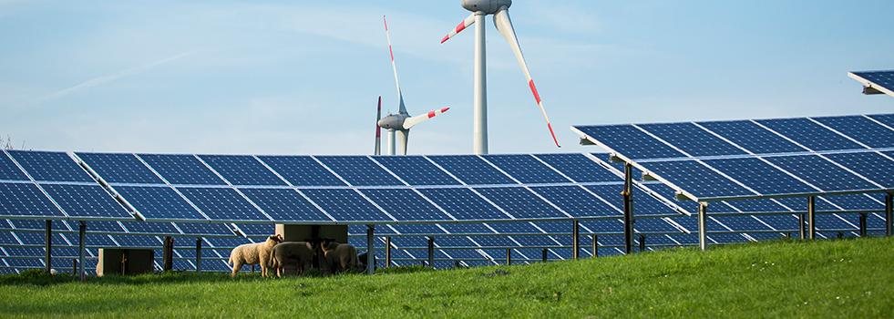 Informationsportal Erneuerbare Energien - Startseite